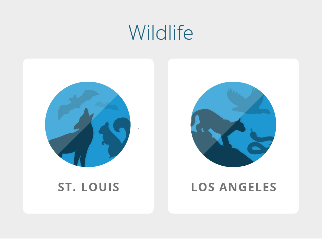 los-angeles-st-louis-wildlife
